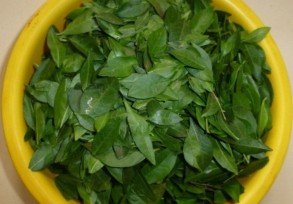Fresh Natural Henna Leaves